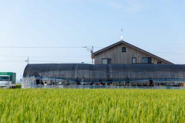 農業経営の強化術